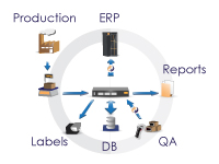 Production Capture System